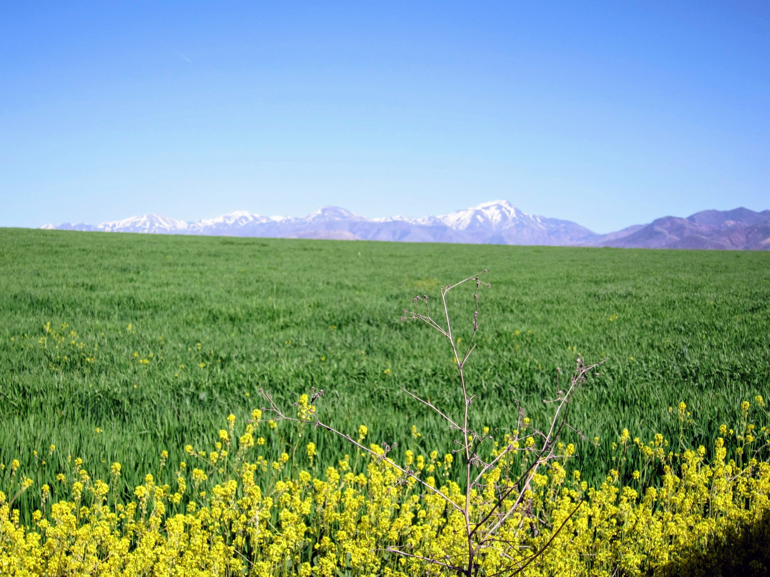 Montagne Anatolie
