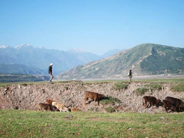 berger tadjikistan