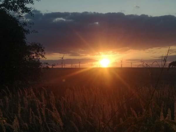 coucher de soleil sur éoliennes